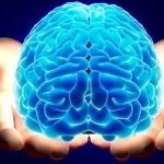 10 توصیه برای حفظ سلامت مغز