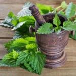 با این گیاهان افسردگی تان را درمان کنید